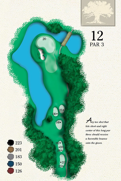 Map of Hole 12 of Cougar Point Golf Course