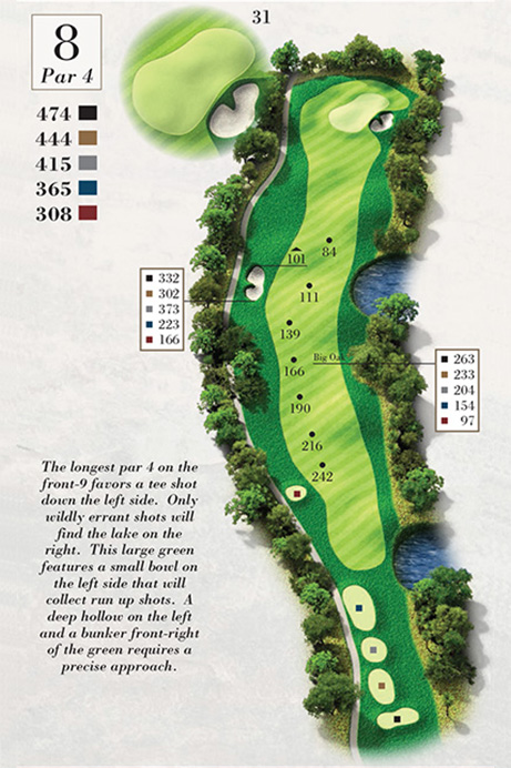Map of Hole 8 of Turtle Point Golf Course