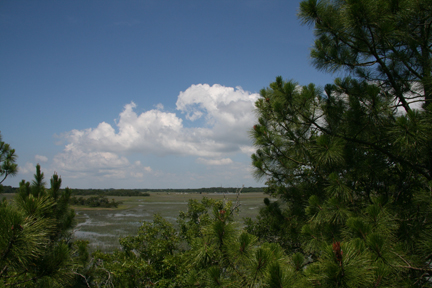 View from Marsh Tower behind No. 6 at Cougar Point